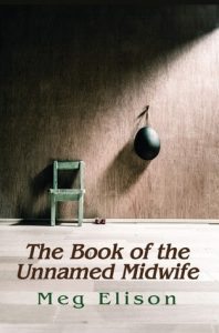 the-book-of-the-unnamed-midwife
