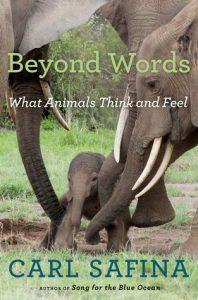 beyond-words